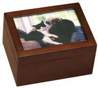 Memory box with cat photo